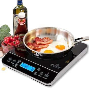 Duxtop Induction Cooktop 9600LS with Food