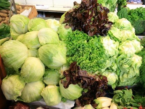 Lettuce_mix_500px