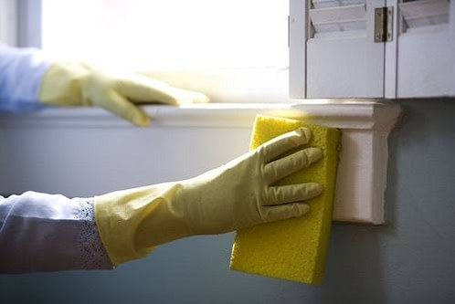 CleaningWithSponge_500px