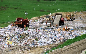 food in a landfill--how to waste less food