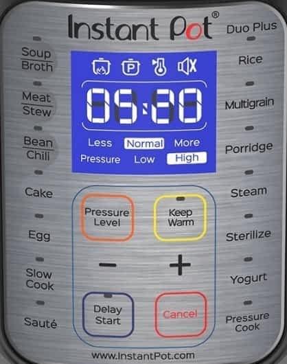 Instant Pot Duo Plus Control Panel