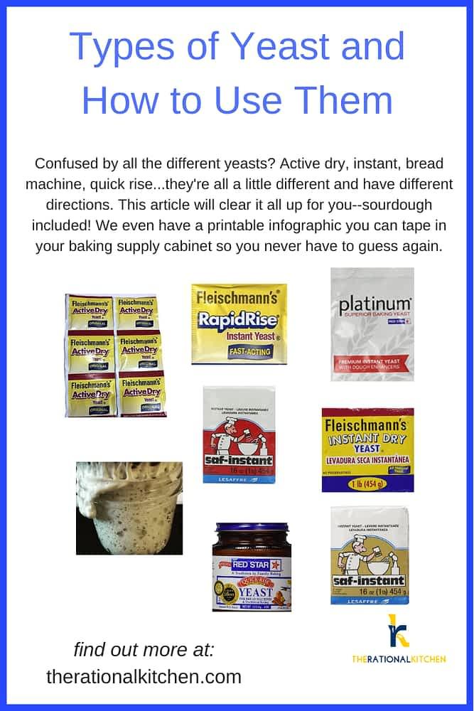 Types of Yeast Pinterest