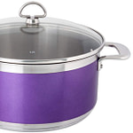 Chantal AllergenWare Stock Pot